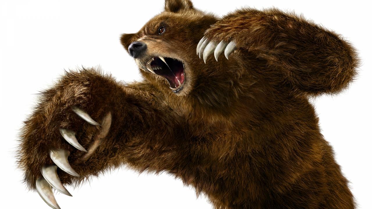اضغط على الصورة لعرض أكبر  الاســـم:Tekken-Bears-Anger-.jpg المشاهدات:25 الحجـــم:122.1 كيلوبايت الرقم:139474